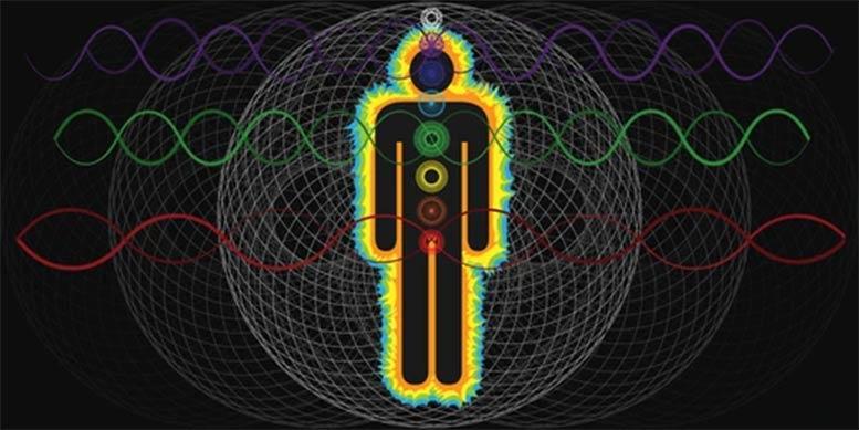 Biorhythm Charts